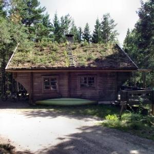 Auf der Suche nach dem alten Schweden_1